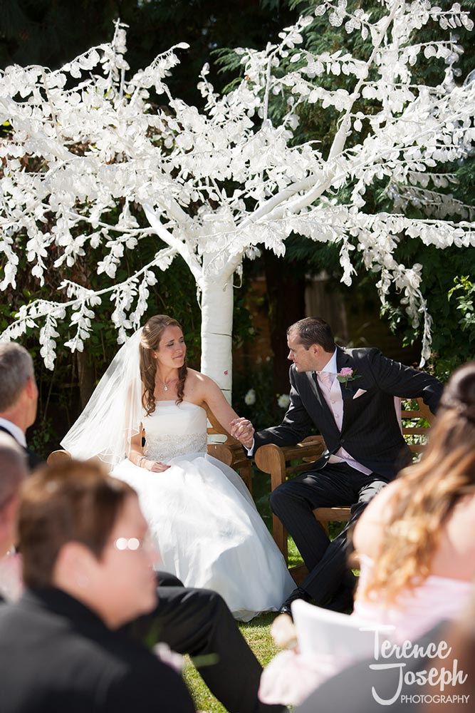 White wedding tree at Summer Wedding